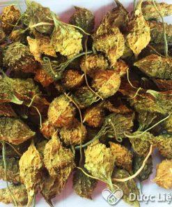 Sản phẩm trái khổ qua rừng Thái sơn cung cấp, được nhiều khách hàng tin tưởng và sử dụng