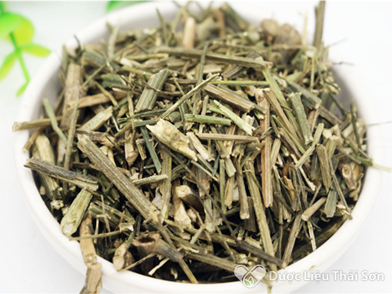 Hình ảnh cây thuốc xuyên tâm liên khô Dược Liệu Thái Sơn cung cấp